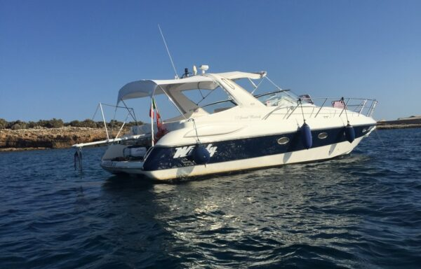 Windy Grand Mistral 37